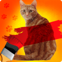 Paint a Cat in Color Joke