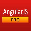 AngularJS Pro Quick Guide