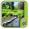 Garden Stepping Stones Design
