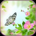 HD Gentle Flowers Wallpaper