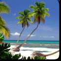 Ocean Beach Live Wallpaper