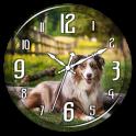 Dog Clock Live Wallpaper