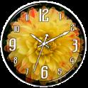 Yellow Dahlia Clock Live WP