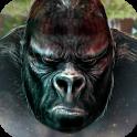 Monkey Kong Gorilla Skull
