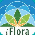 iFlora