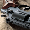 gun on sand live wallpaper