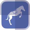 Horse Racing News - SF