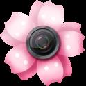 Sakura Foto Molduras-Natureza