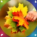 fondos de pantalla vivo otoño