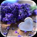 Liebe Blumen Live Hintergrund