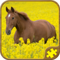 Horse Puzzles Free