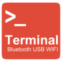 Bluetooth USB WIFI Terminal