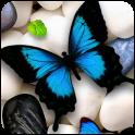 나비 라이브 벽지
