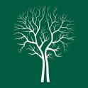 CheckTrees