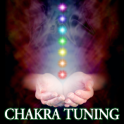 CHAKRA AJUSTE meditación