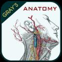 Gray's Anatomy - Anatomy Atlas (Offline)