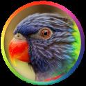 Best Bird Sounds And Ringtones