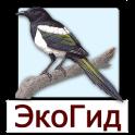 EcoGuide: Russian Birds