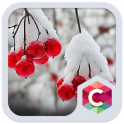 Snowy Cherry C launcher Theme