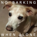 When dog is alone AntiBarking