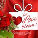 Valentine Week Special 2018