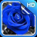 Blue Rose Live Wallpaper HD