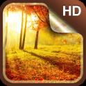 Herbst Live-Hintergründe HD