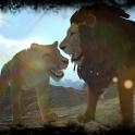 Immobilier Lion Simulator