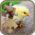 Cute Animals Jigsaw Puzzle