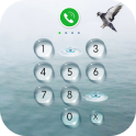 AppLock - Seagulls