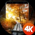 Fondos de pantalla de otoño 4k
