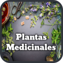 Medicinal Plants and Natural Medicine