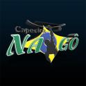 Capoeira Nago