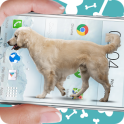 Dog on screen: Woof woof joke (simulation)
