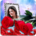 Rose Photo Frames HD