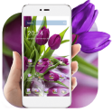 HD Purple Tulip Wallpaper
