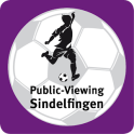 Public-Viewing Sindelfingen
