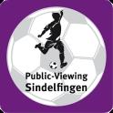 Public-Viewing Sindelfingen