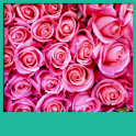 Pink Roses Live Wallpapers