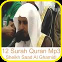 Saad Al Ghamidi 12 Surah Quran