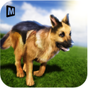 Real Dog Shephard World SIM