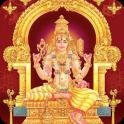 Baglamukhi Aarti