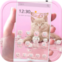 Pink Kitty Theme Rose Gold Kitty