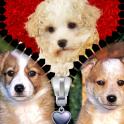 Dog Zipper Lock Screen