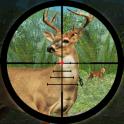 Forest Deer Hunting