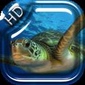 Turtle Underwater Live WP