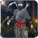 Ninja Fight Kung Fu Shadow Assassin Samurai Games