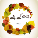 Jannat Kay Pattay Urdu Novel By Nimra Ahmed