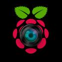 Raspberry Pi Remote Monitor