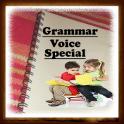 Grammar Voice Special